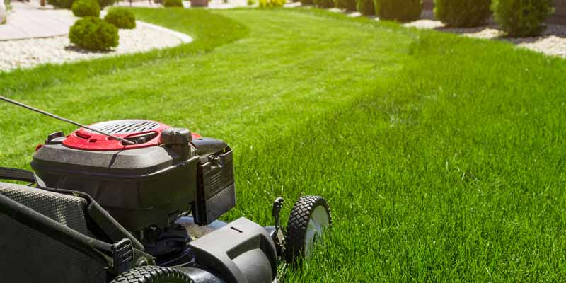 Commercial Grass Cutting Lawn Yard Maintenance Services Whitby Durham Region